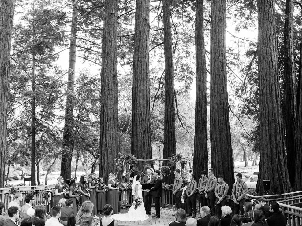 santa cruz wedding redwoods sanborn park