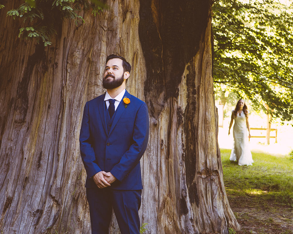 boda en un bosque de sequoias california first look