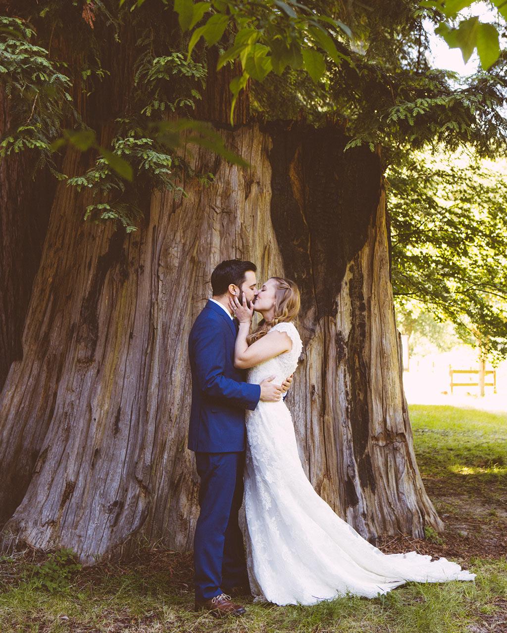 boda en un bosque de sequoias california